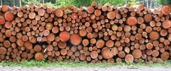 mittendurchmesser stammholz berechnen