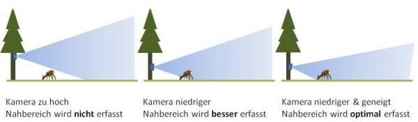 Optimale Ausrichtung einer Wildkamera - Grafik: Wald-Prinz.de