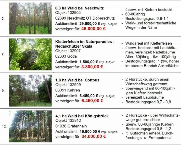Auktionsergebnisse Waldstücke Herbstauktion 2013 - Quelle: Hornig