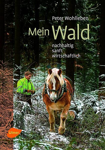 Peter Wohlleben Mein Wald Buch