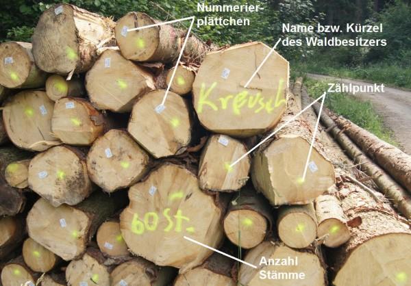Markierungen bei Langholz - Bild: Wald-Prinz.de