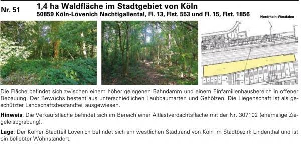 Das Waldgrundstück im Stadtgebiet von Köln konnte nicht verkauft werden - Bild: Katalog Karhausen