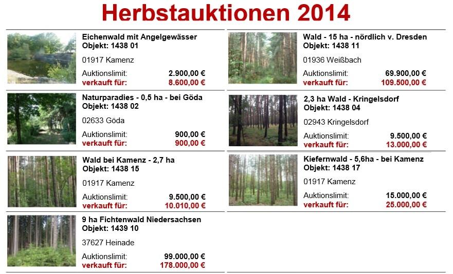 Herbstauktion Hornig Wald 2014