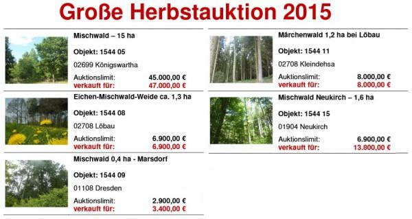 Herbstauktion Hornig Wald 2015