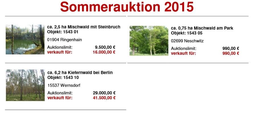 Sommerauktion Hornig Wald 2015
