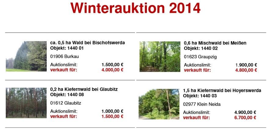 Winterauktion Hornig Wald 2014