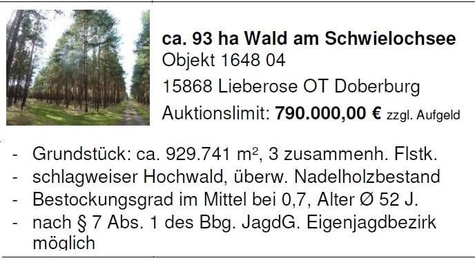 Wald am Schwielochsee - Bild: Hornig Auktionen