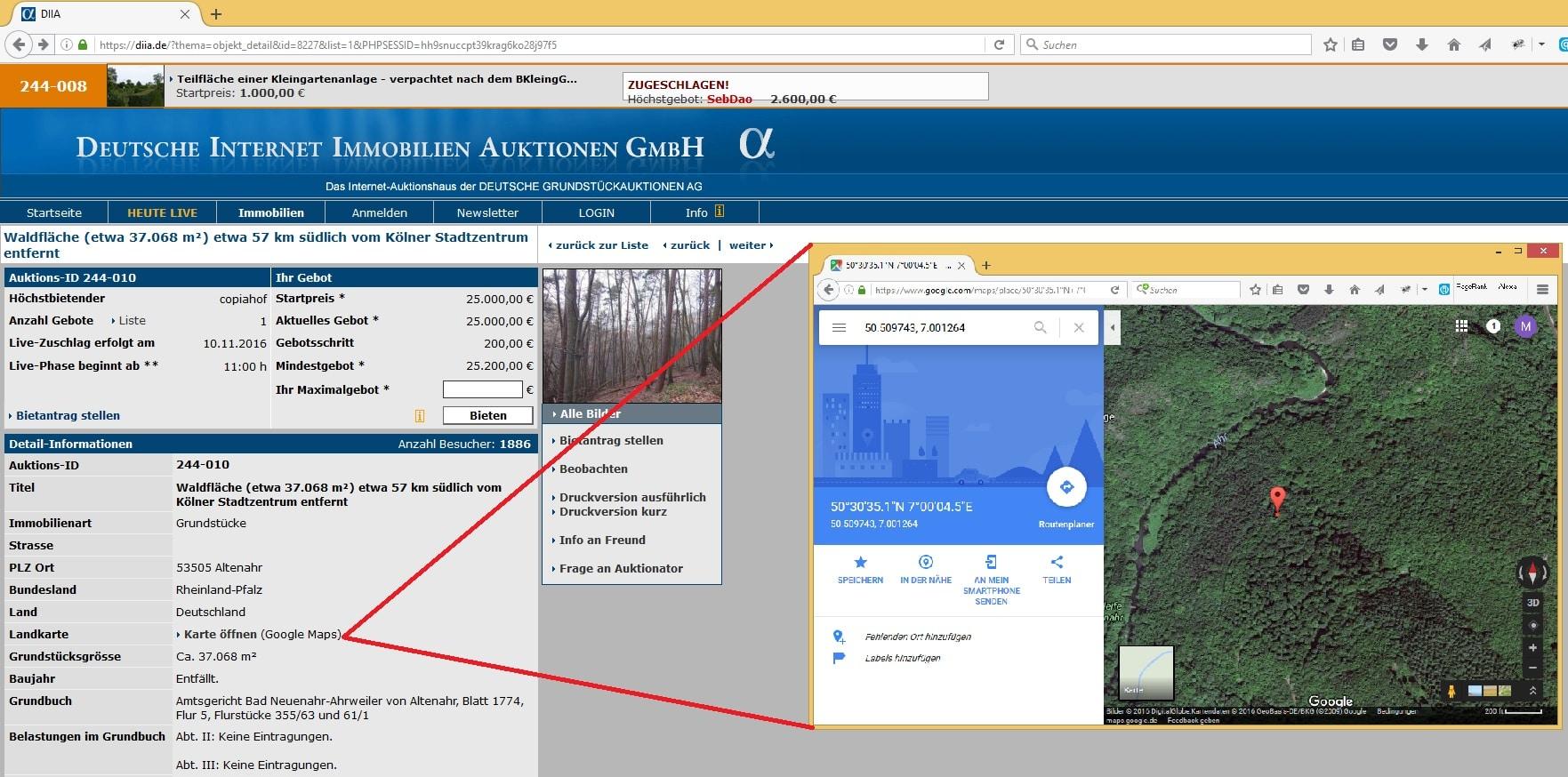 deutsche internet immobilien auktionen: wald online ersteigern
