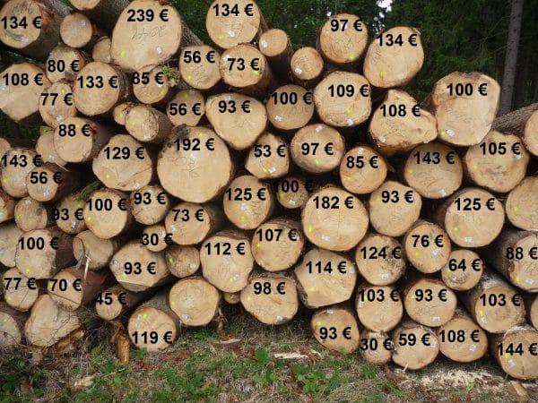 Lieblings Holzpreise und Holzpreisentwicklung Fichte | Wald-Prinz.de #RZ_02